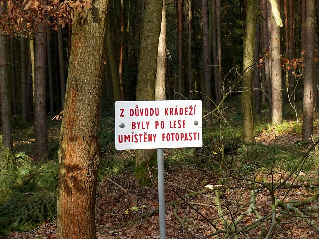 Upozornění na fotopasti v lese mezi drahotínským a poběžovickým katastrem funguje.