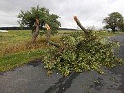 Následky bouřky na Horšovskotýnsku.