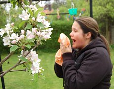 Květen  je pro alergiky nejtěžším  měsícem.