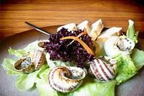 ŠNECI PO BURGUNDSKU. Jedním z nových pokrmů v menu rybnické restaurace je právě jídlo ze šnečího masa.