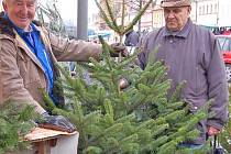 Ačkoliv je dnes k dostání široká škála umělých vánočních stromků, lidé stále dávají přednost živým. Podle obchodníků jsou oproti loňskému roku o něco levnější.