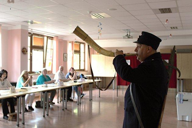 Volby do Evropského parlamentu 2019 v Plzeňském kraji