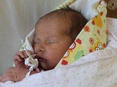Johanka Mifková z Klenčí pod Čerchovem se narodila 3. dubna ve dvě hodiny odpoledne v Domažlické porodnici, na sestřičku se doma již těšil malý Adam