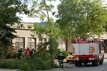 Domažličtí hasiči odklízeli následky bouře hned v neděli.