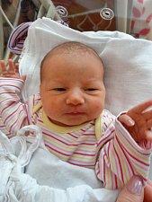 TEREZA ŠINDELÁŘOVÁ z Horšovského Týna (3560 g a 51 cm) se narodila 16.dubna v plzeňské nemocnici mamince Kláře a tatínkovi Jaroslavovi. Na sestřičku se doma již  těšili sourozenci Kubík, Jára a Eliška.