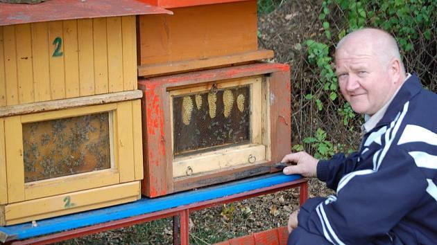 Josef Rajtmajer našel u včel klid.