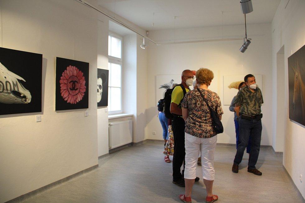 Adam Jílek v současnosti vystavuje svá díla v domažlické Galerii bratří Špillarů. Vernisáž se uskutečnila ve čtvrtek večer.