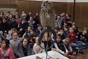 Poběžovičtí školáci si vyzkoušeli výcvik sov.