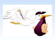 Nejkrásnější dárečky nosí čápi a vrány. Ilustrační foto.