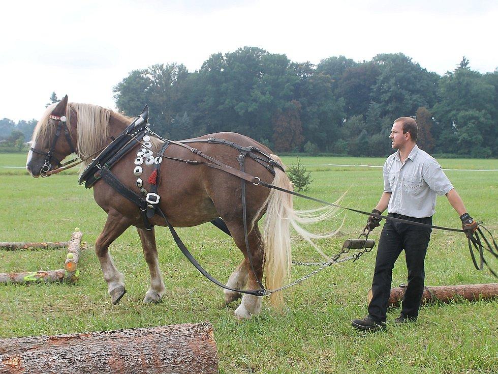 Na Den Českého lesa dorazily stovky návštěvníků. Největší pozornost budil závod chladnokrevných koní.
