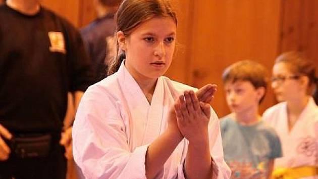 Z minulého ročníku Chodského poháru v karate.