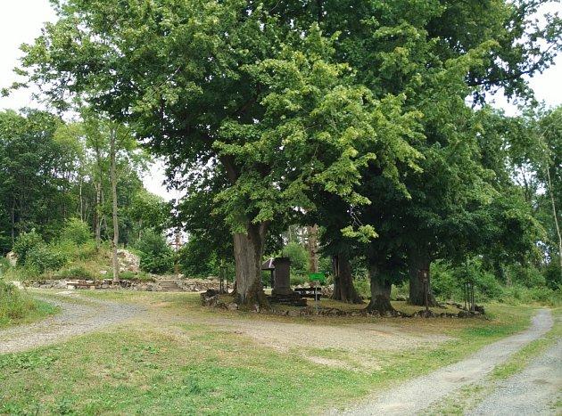 2016. Stromy jsou němým svědkem historické proměny, která Grafenried potkala. Vlevo jsou patrné obvodové zdi kostela.