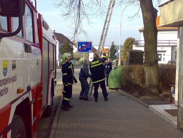 Holýšovští hasiči zachraňovali kotě.