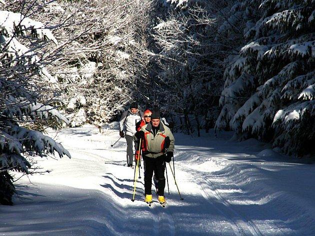 Běžkaři si užívali dobrých sněhových podmínek kolem Čerchova na sklonku loňského roku.