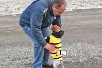 Pejskům o Silvestru nestačí pouze slušivý obleček, který je chrání před zimou. Potřebují pomoc člověka.
