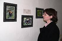 V Ekocentru Taurus jsou nyní k vidění fotografie exotických motýlů.
