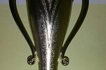 Hokejisté HC Trhanov získali při Tango Cupu pohár za třetí místo.