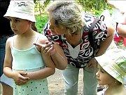Domino vzalo děti do pohádkového lesa