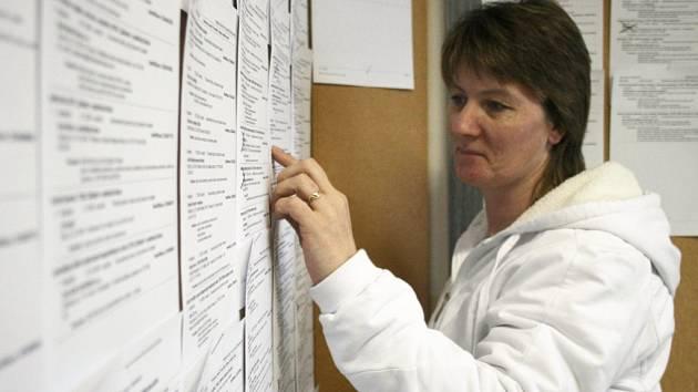 Žena na snímku pročítá na pracovním úřadu v Domažlicích pracovní nabídky.
