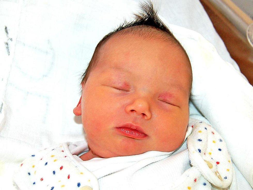 KAROLÍNA Švejdová z Plané se mamince Vendule a tatínku Jiřímu narodila v úterý 13. ledna v 8.24 hodin. Už se jí nemohla dočkat šestiletá sestřička Andrea. Karolína vážila 3,42 kg a měřila 51 cm.