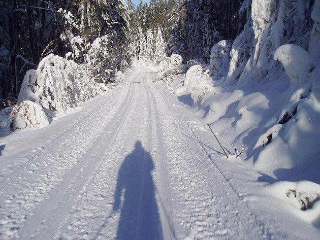 Pokud vydrží nynější počasí, na víkend bude všechny či většina běžeckých tras v Caparticích a okolo Čerchova upravena.