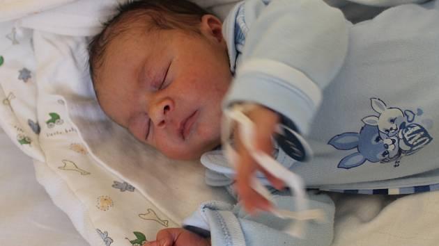 Štěpán Vít ze Šitboře se narodil v domažlické porodnici 29. ledna v 09:49. Jeho váha při narození byla 3 520 gramů a míra 52 centimetrů.