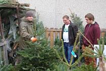 JAKUB JANDA  při prodeji vánočních stromků, které byly vypěstované na speciálních plantážích.