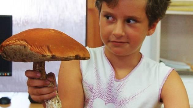 Sedmiletá Daniela se svým houbařským úlovkem