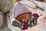 Rose Polívková zPředslavi se narodila vklatovské porodnici 14. září ve 21:23 hodin (2520 g, 47 cm). Rodiče Kristýna a Martin věděli dopředu, že jejich prvorozeným miminkem bude holčička.