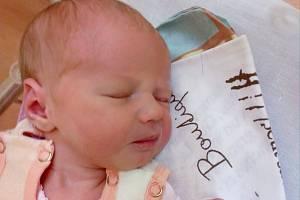 3) Leontýnka Bernáthová z Horšovského Týna se narodila 28. listopadu 2018 v 17:15 hodin s váhou 3330 gramů a mírou 52 centimetrů. Maminka Martina s tatínkem Martinem svou dcerku na světě přivítali společně, stejně tak pro ní vybírali i jméno.