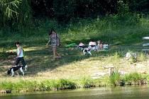 Z Mlýnečku, kde račí populaci zdecimoval vloni mor.  Někteří příchozí jako by nečetli informační tabule, jež jsou na několika místech u rybníka.