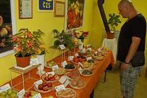 Výstava domažlických zahrádkářů a členek Seniorského klubu TJ Sokol.