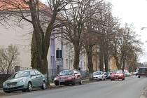 AUTA MEZI LÍPAMI. Nyní řidiči v Kozinově ulici parkují mezi vzrostlými stromy.