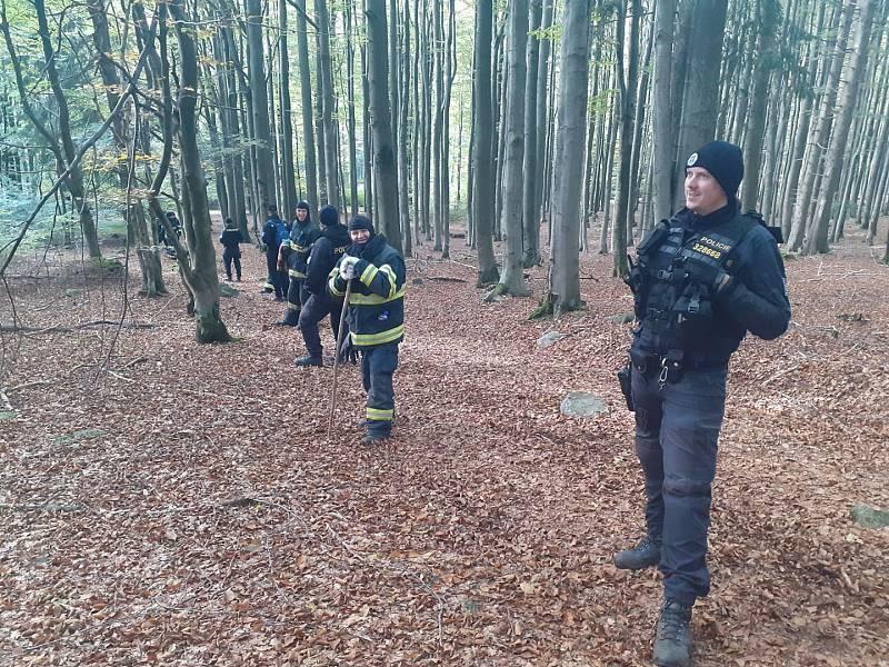 V pondělí odpoledne hledala ztracenou dívku v Českém lese na Domažlicku široká rojnice z policistů a hasičů.