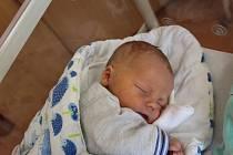Albert Krejčí ze Sušice se narodil vklatovské porodnici 24. srpna ve 13:10 hodin (3560 g, 52 cm). Rodiče Růžena a Jan věděli dopředu, že Rozálii (6) přivezou domů malého brášku.