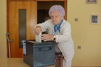 Voliči v seniorském penzionu v domažlické Břetislavově ulici volili do přenosné urny.