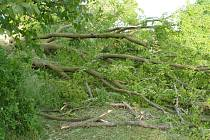 Silnému větru neodolala mohutná lípa ve Všekarech.