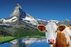 PRO ŠVÝCARSKO jsou typické Alpy.
