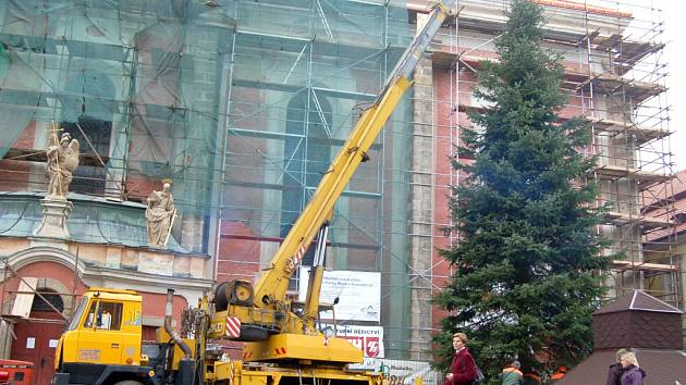 Instalace vánočního stromu v Domažlicích.