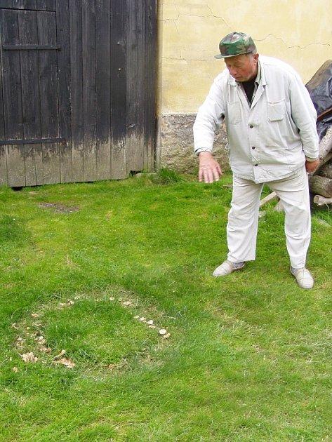 Václav Kaas ukazuje záhadný kruh na svém dvorku