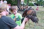 Chlapec byl opravdu fascinovaný, když držel na ruce s pomocí sokolníka dravce.