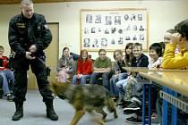 Policejní fenka Zika hledala pod vedením Petra Kopty v učebně hudební výchovy drogy. Ty tam však ukryli samotní policisté v rámci preventivní přednášky pro školáky.