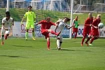 Z utkání Česko U17 vs. Německo U17 v Domažlicích.