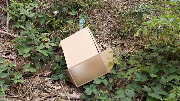 Mezi vyhozeným odpadem se kolikrát najdou věci s citlivými údaji a nevhodným obsahem.