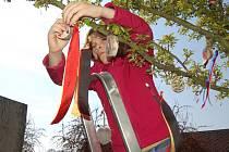 Školáci z Domažlic a Furthu im Wald ve středu v poledne ozdobili stromy v zahradě Chodského hradu pestrobarevnými pentlemi.