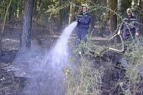Ilustrační foto ze zásahu hostouňských hasičů v lese u Mirkovic.