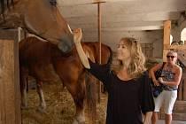 Lucie Vondráčková se seznámila s osudy koní v mířkovském útulku, jehož se stala patronkou.