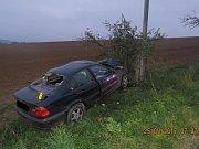 Řidič se lekl srny a řízení strhl mimo vozovku