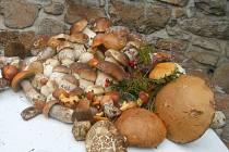 Na pořádnou nadílku si musí houbaři díky suchému počasí ještě počkat.