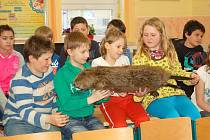 Slavnostní otevření bobří stezky se kvůli špatnému počasí konalo ve všerubské škole.